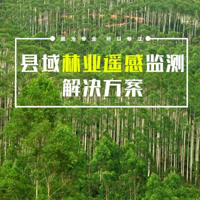 县域林业遥感监测解决方案